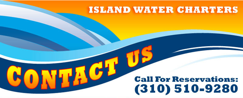 Contact Island Water Charters